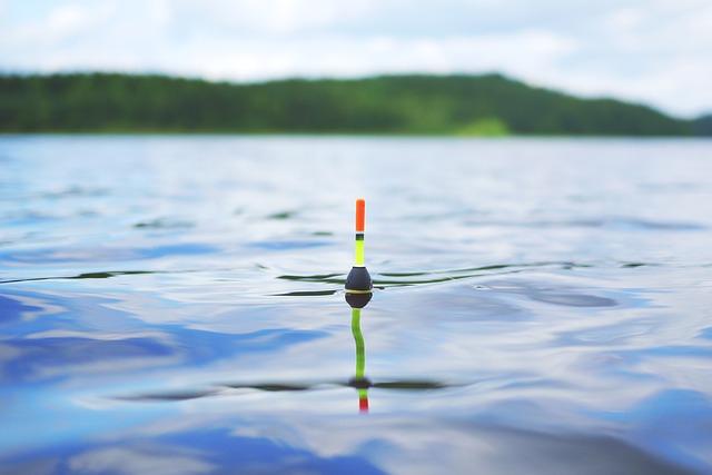 これはお得!100均で購入可能な磯釣りの便利グッズ!