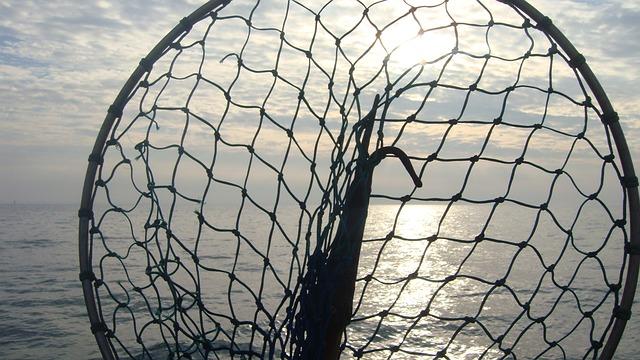 磯釣りに便利なタモのちょうどいい長さや重さ、基準はコレ!